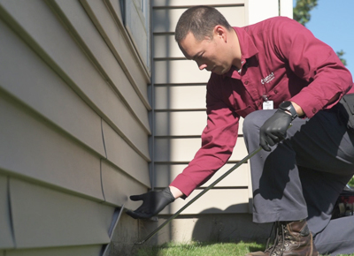 Pestfree 365 year-round pest control at Batzner Pest Control in Wisconsin - Serving New Berlin, Green Bay, Milwaukee, Madison, Racine and surrounding areas